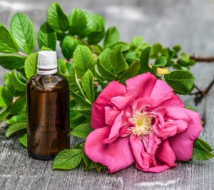 Rose blossom and bottle of essential oil